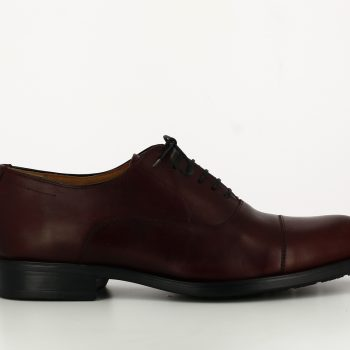 blucher oxford burdeos